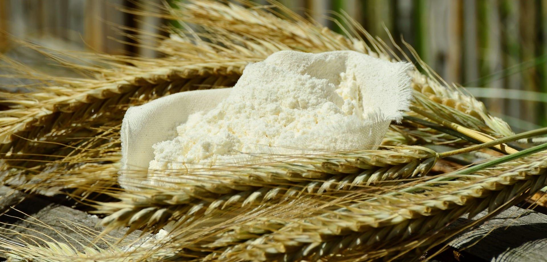 Oplatilo sa pestovať pšenicu alebo skôr jačmeň?