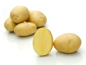 Odroda zemiakov Taisiya