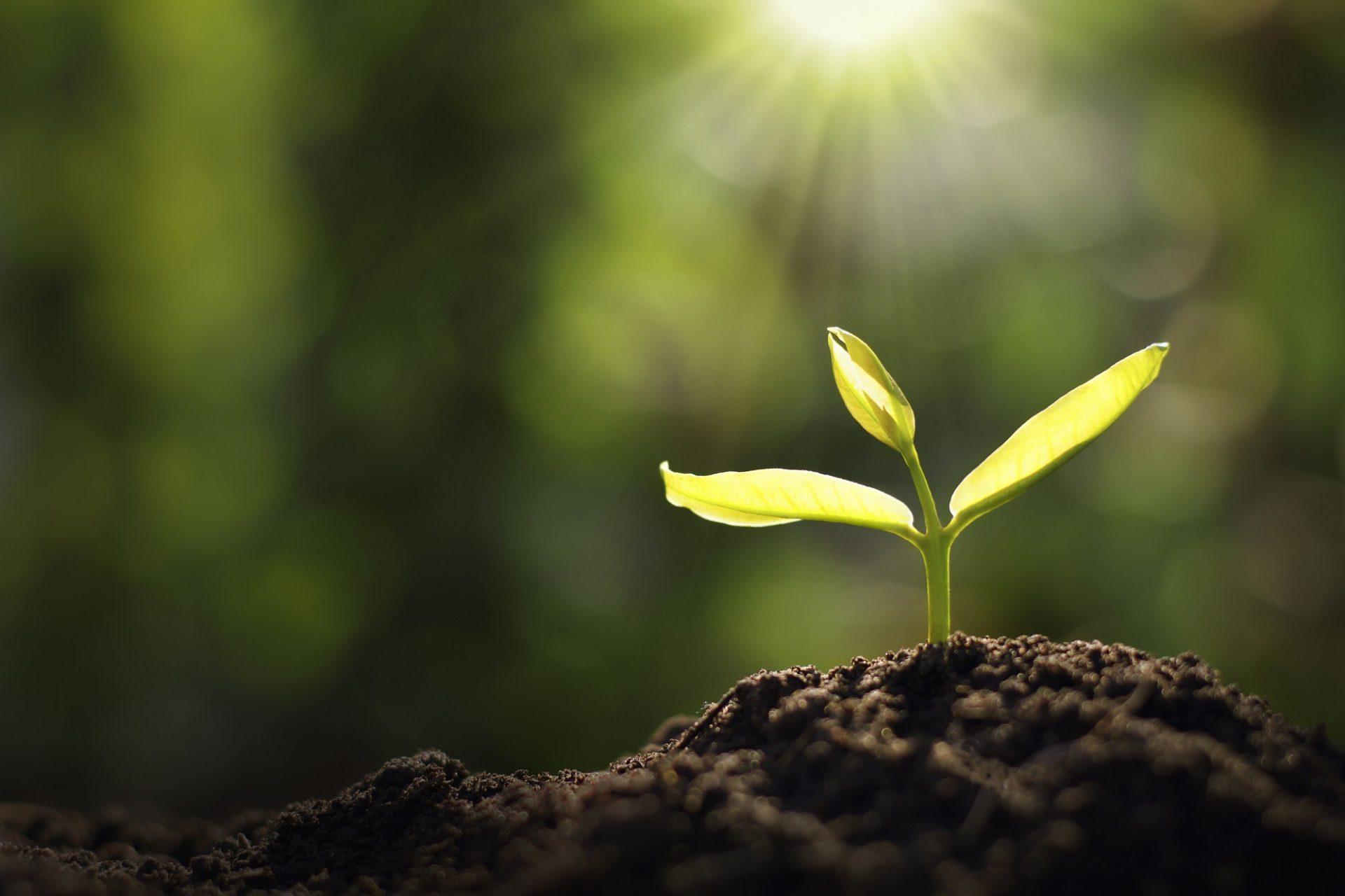 Hospodáriť ekologicky vyžaduje komplexný prístup
