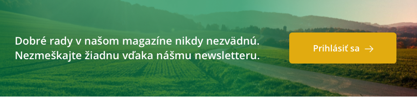 Osivo Newsletter